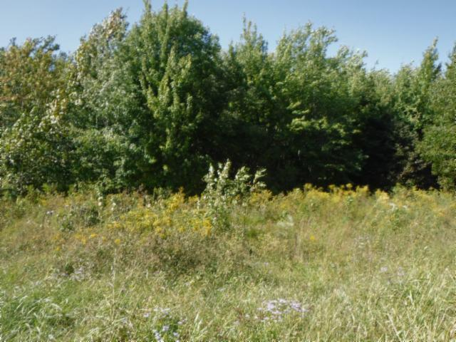0 .53 Ac.Airport Road, Livingston, TN 38570 - Livingston, TN real estate listing