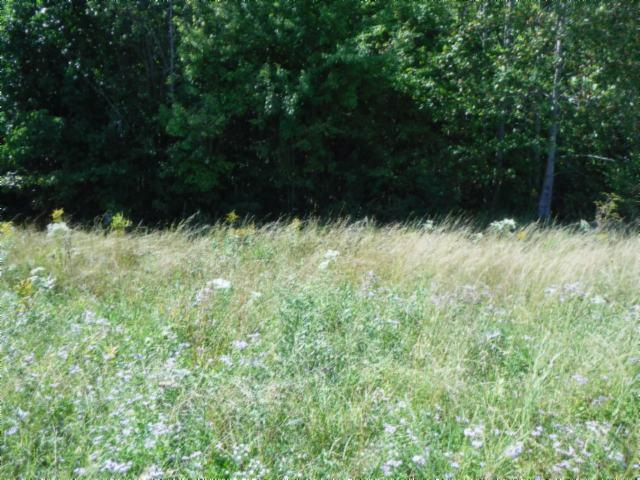 1 .52 Ac.Airport Road, Livingston, TN 38570 - Livingston, TN real estate listing