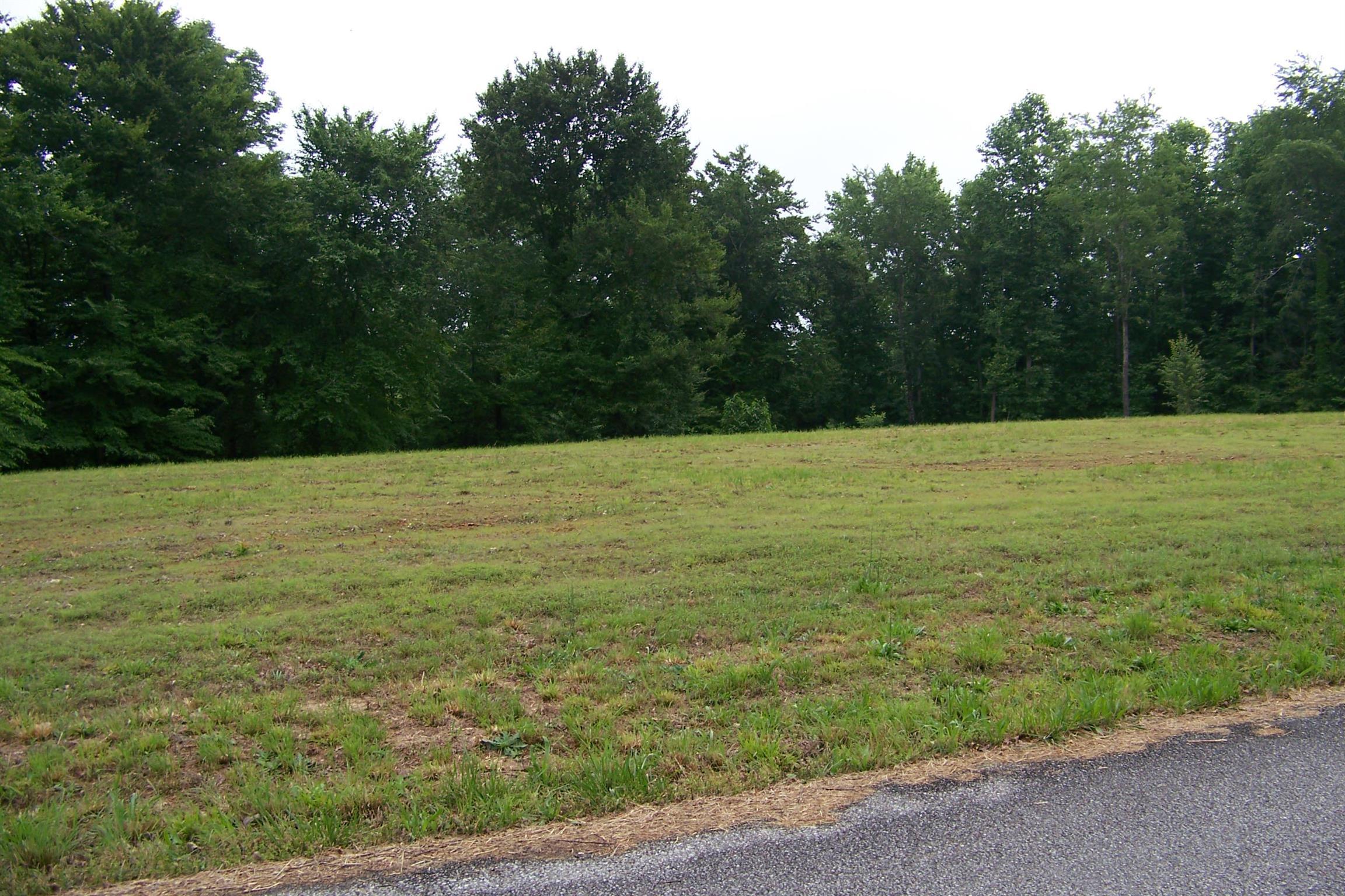 246 Betsy Drive, Waynesboro, TN 38485 - Waynesboro, TN real estate listing