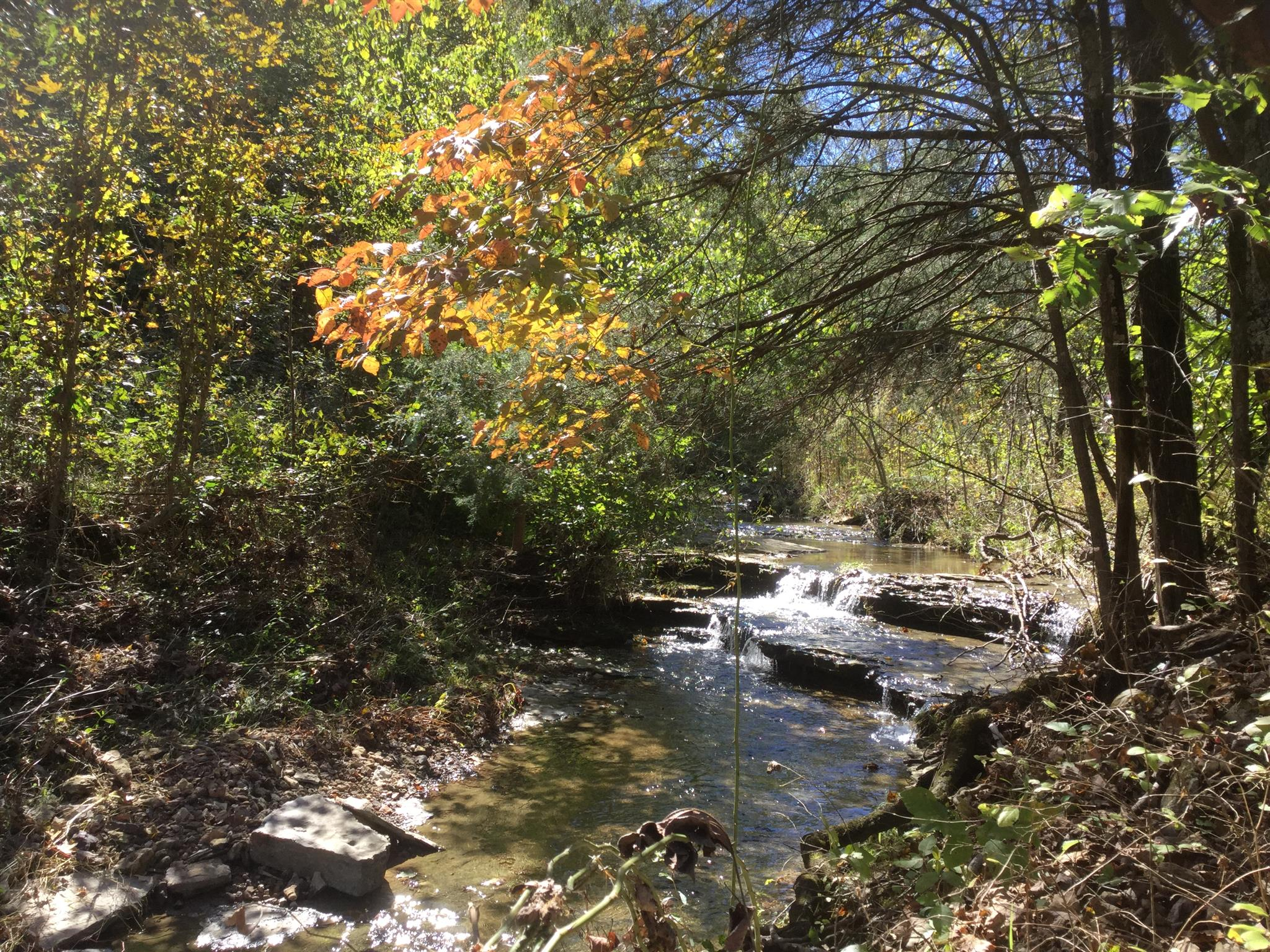 0 Dutch Creek Rd, Westmoreland, TN 37186 - Westmoreland, TN real estate listing