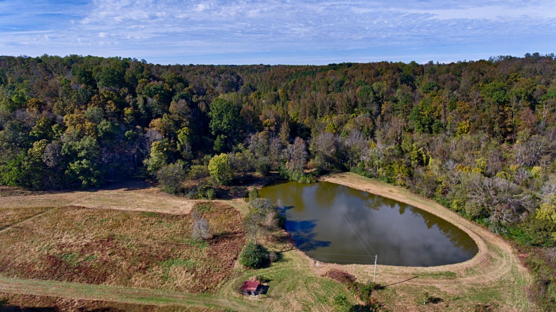 795 Shoal Bluff Rd, Minor Hill, TN 38473 - Minor Hill, TN real estate listing