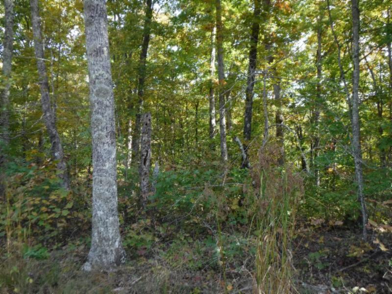 3173 Chapel Hill Rd, Crawford, TN 38554 - Crawford, TN real estate listing