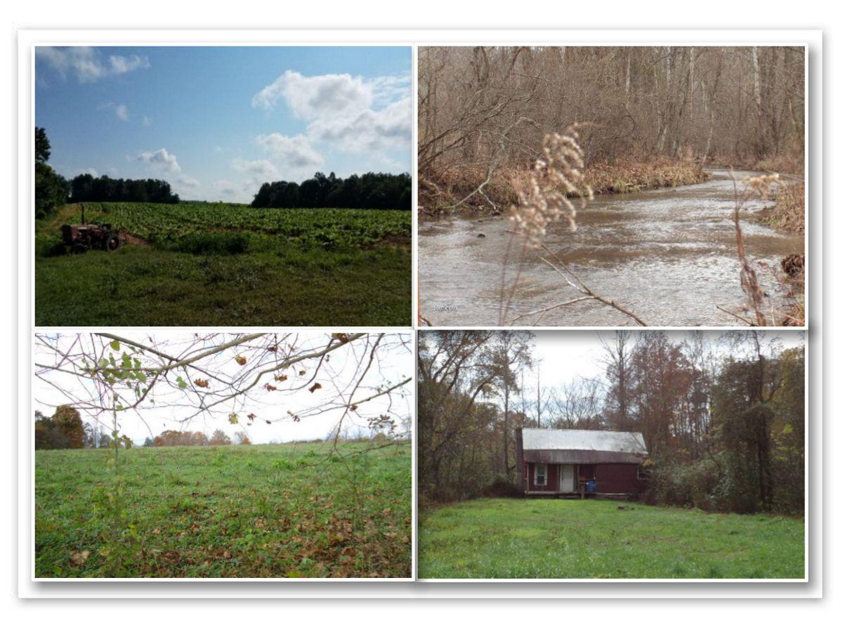 627 .50ac Birdwell /Barnes Rd., Whitleyville, TN 38588 - Whitleyville, TN real estate listing
