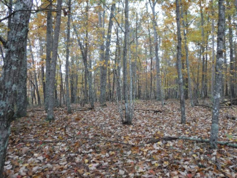 12 .74ac Arrowhead Rd, Moss, TN 38575 - Moss, TN real estate listing