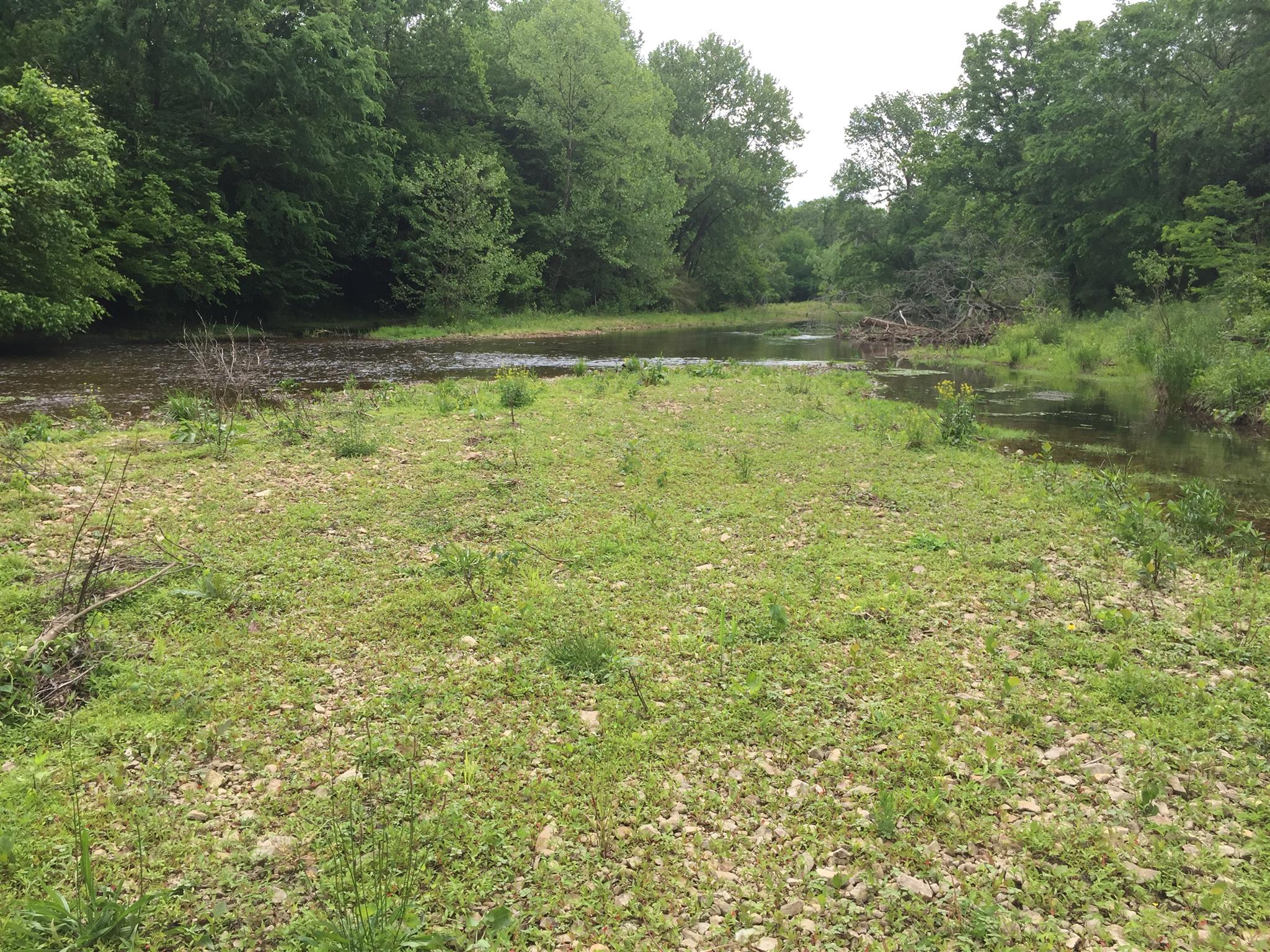 1 Reynolds Road Property Photo - Hurricane Mills, TN real estate listing