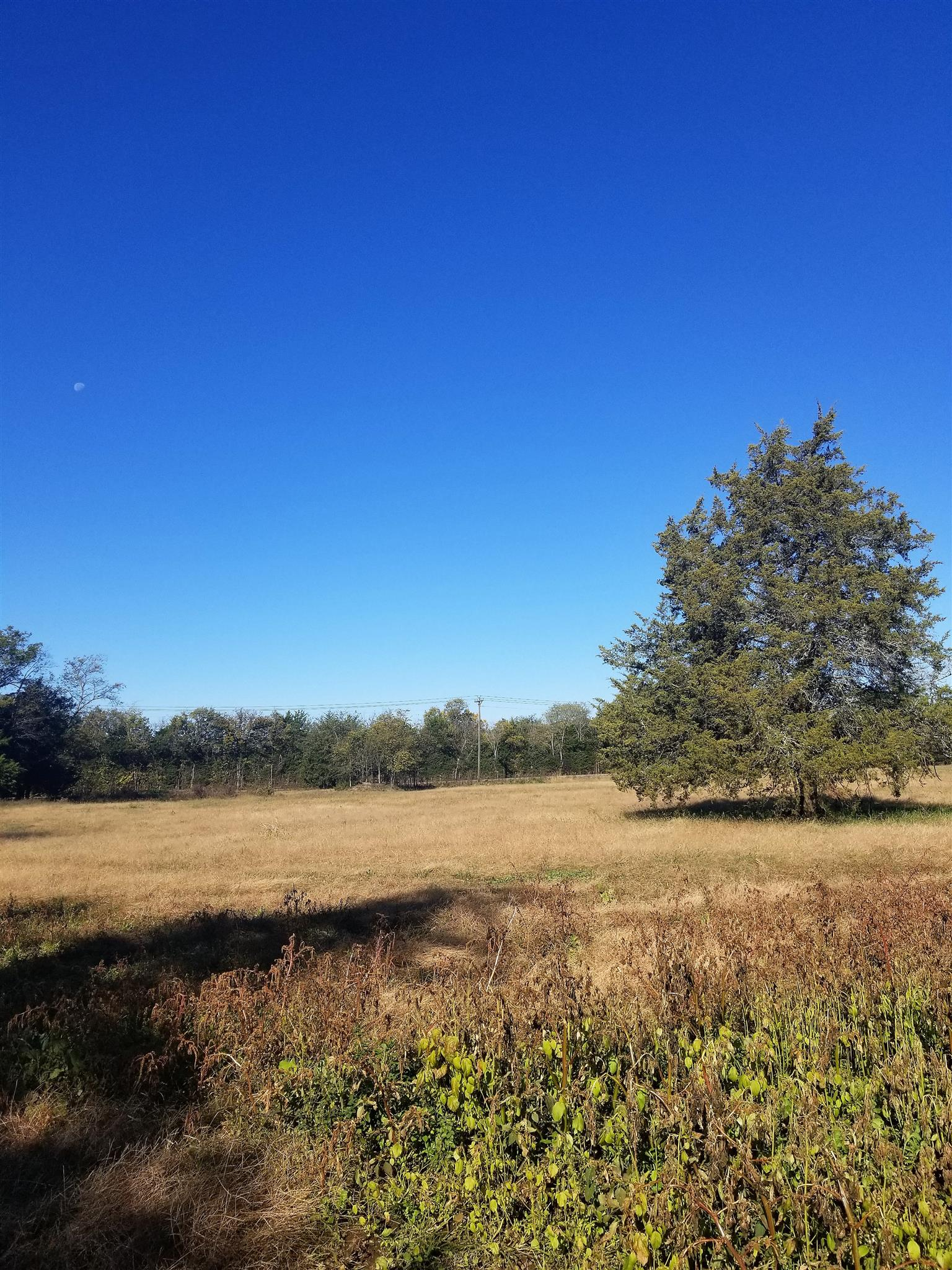 2 Ridley Earp Rd, Christiana, TN 37037 - Christiana, TN real estate listing