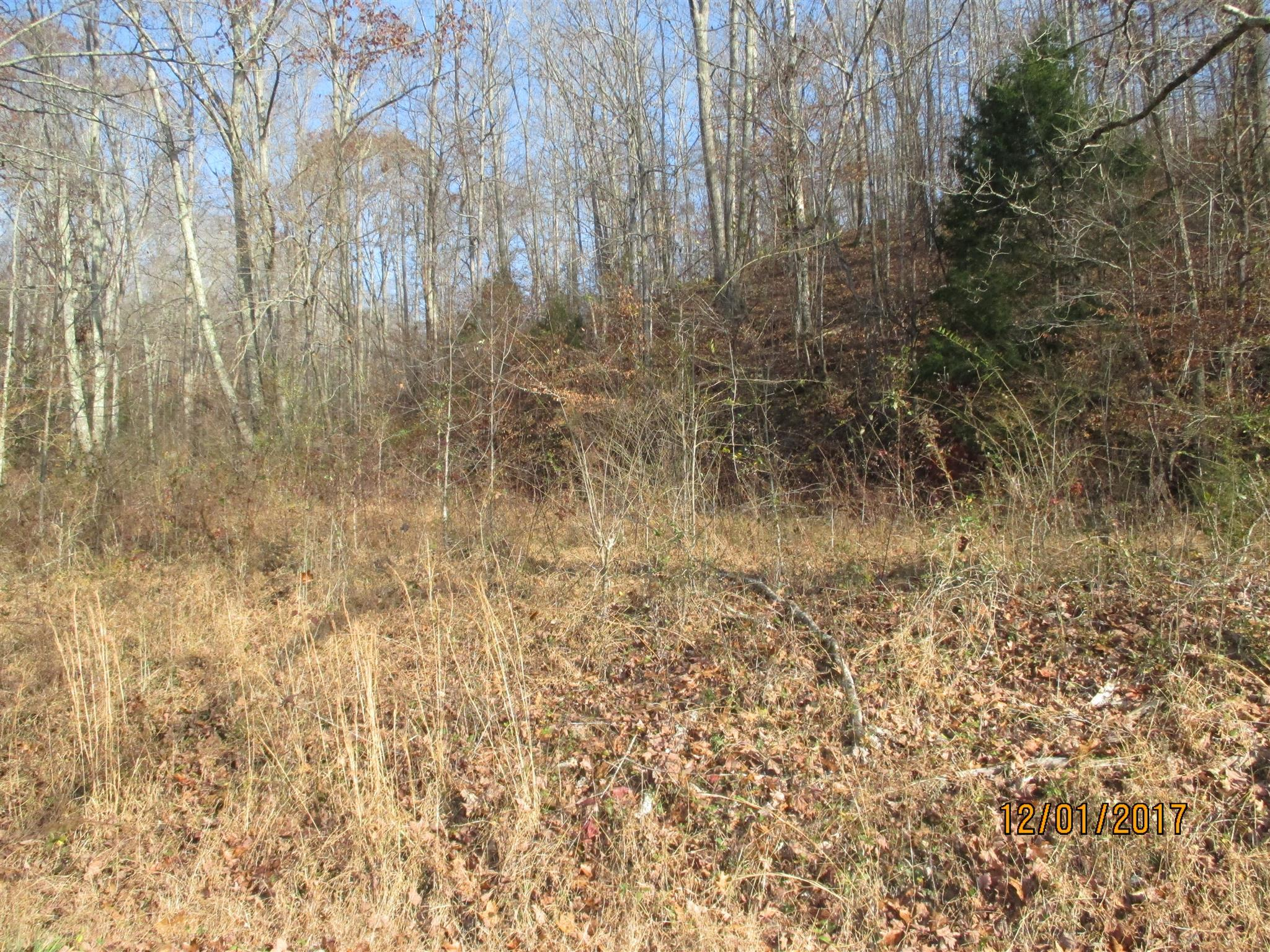 0 Choates Creek Rd Property Photo