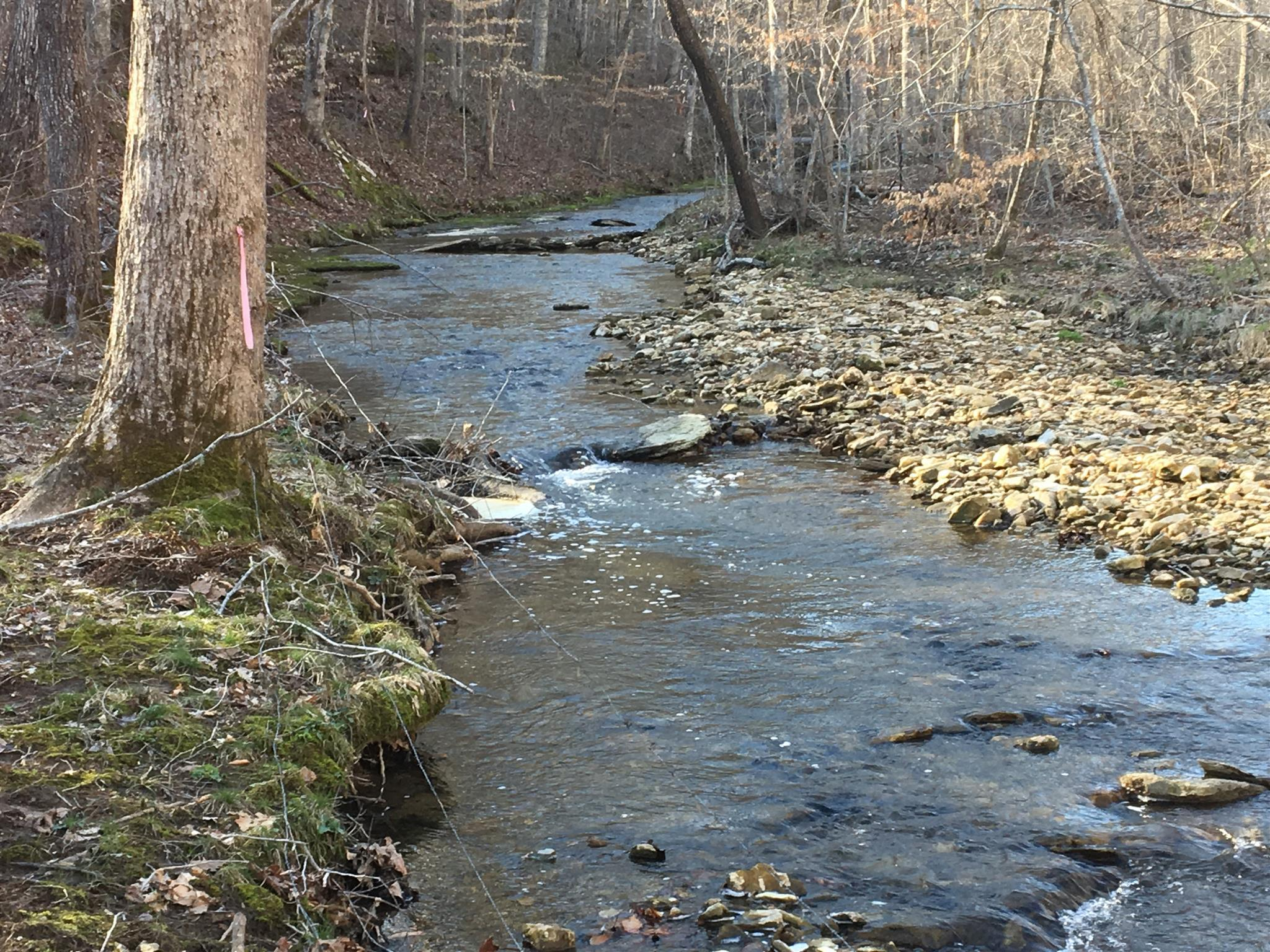 0 Hunting Camp Rd, Fairview, TN 37062 - Fairview, TN real estate listing