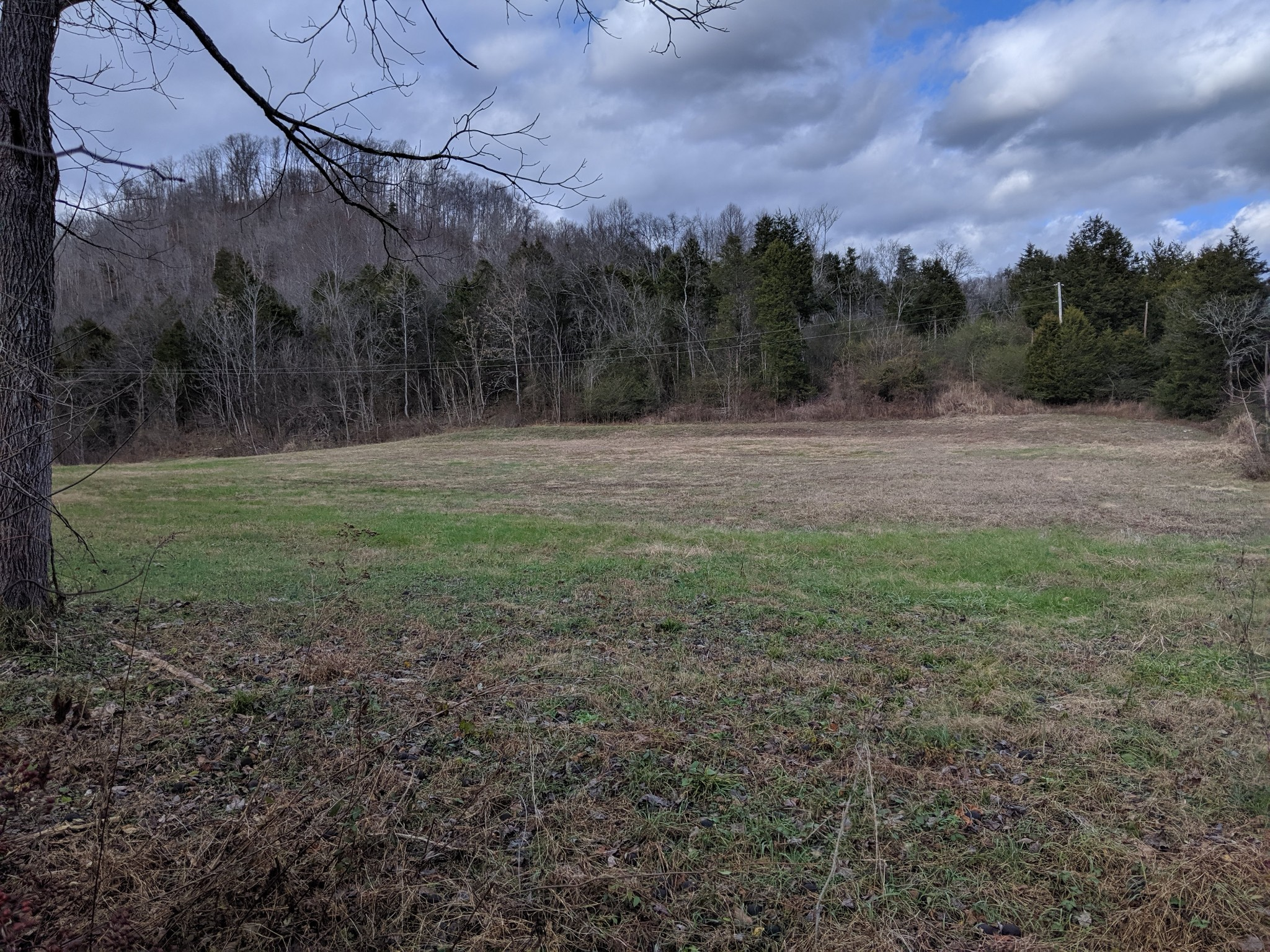 153 Big Creek Rd, Pleasant Shade, TN 37145 - Pleasant Shade, TN real estate listing