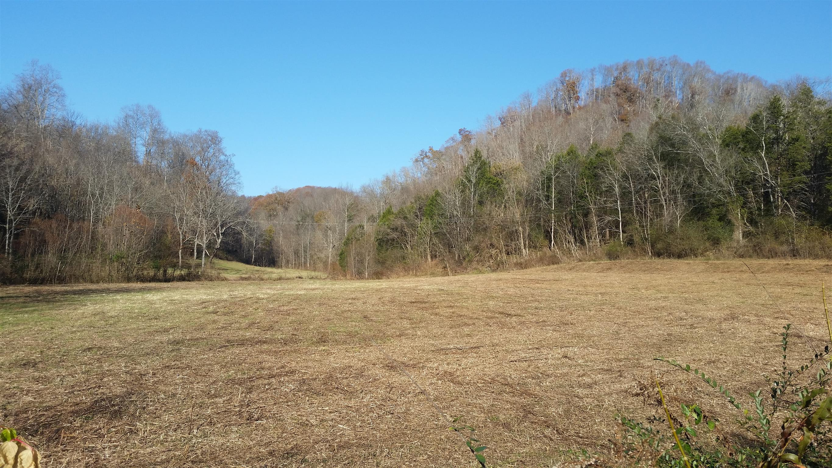 153 Big Creek Rd, Pleasant Shade, TN 37145 - Pleasant Shade, TN real estate listing