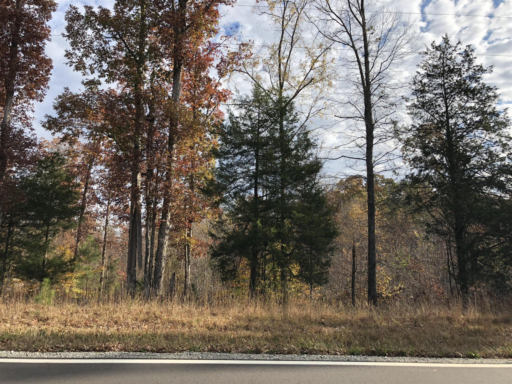 0 Highway 104 N, Cedar Grove, TN 38321 - Cedar Grove, TN real estate listing
