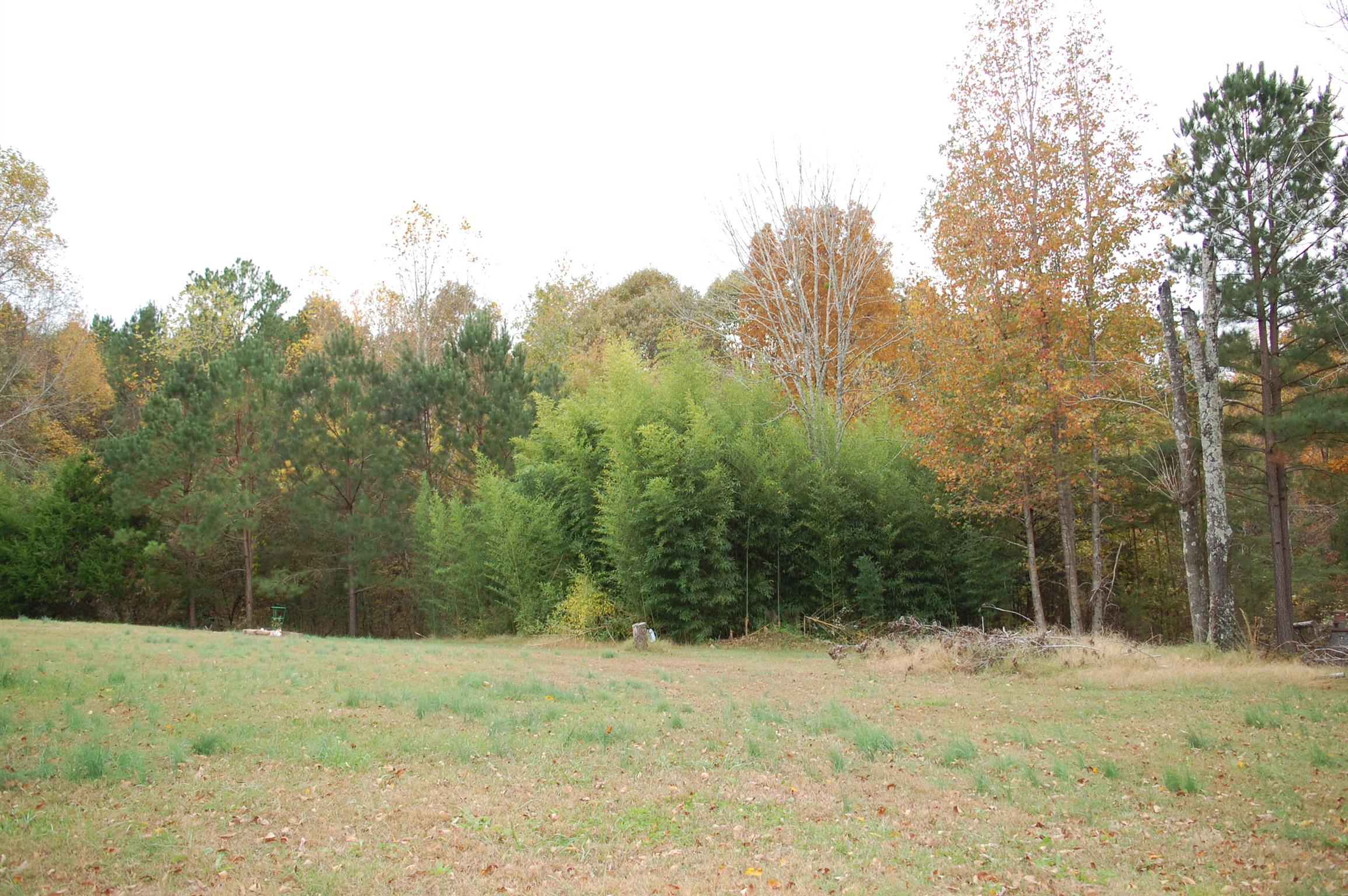 2000 Clay Tomlinson Rd Property Photo - Erin, TN real estate listing