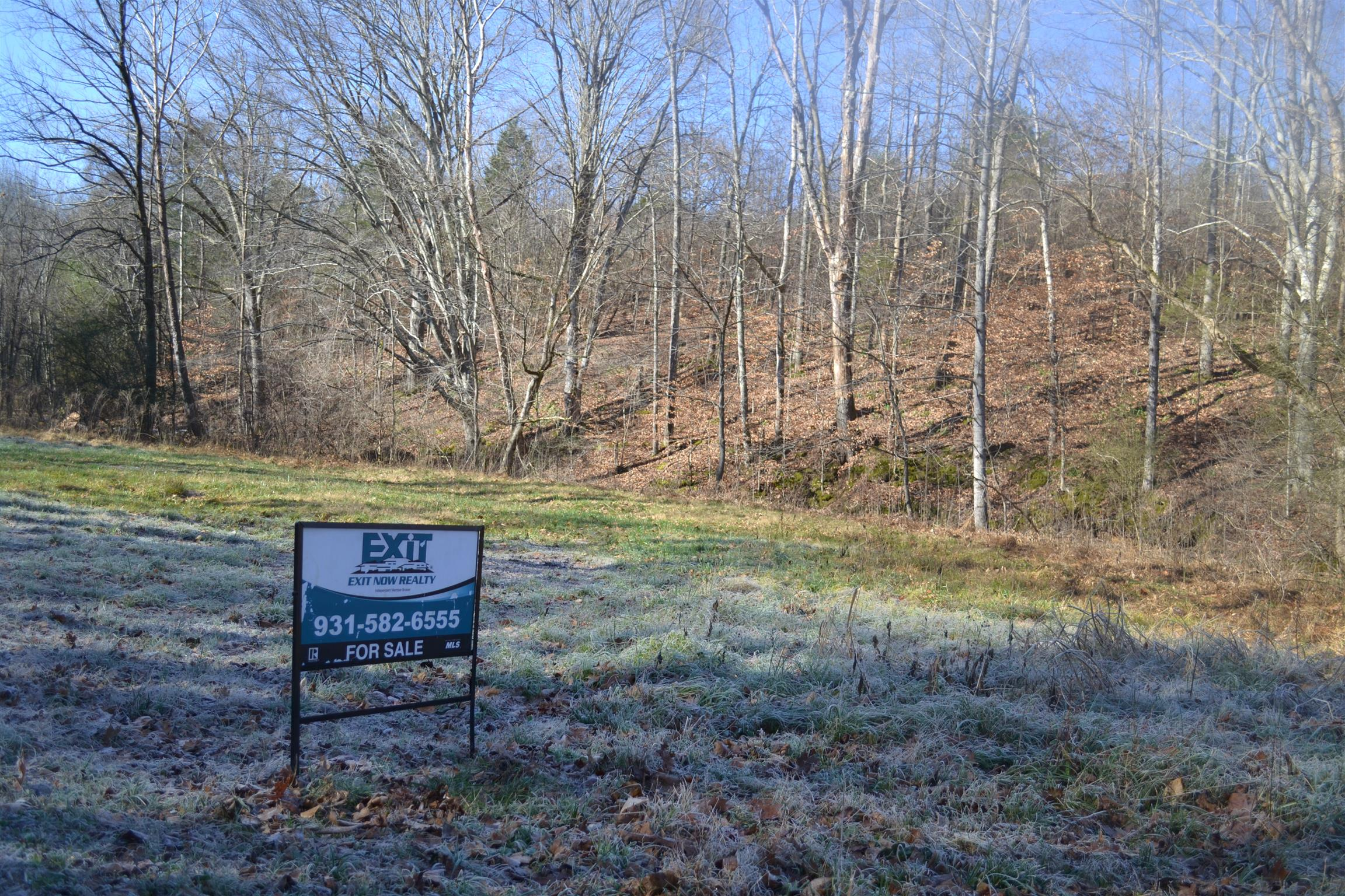 0 Pennywinkle Branch Rd, Waverly, TN 37185 - Waverly, TN real estate listing