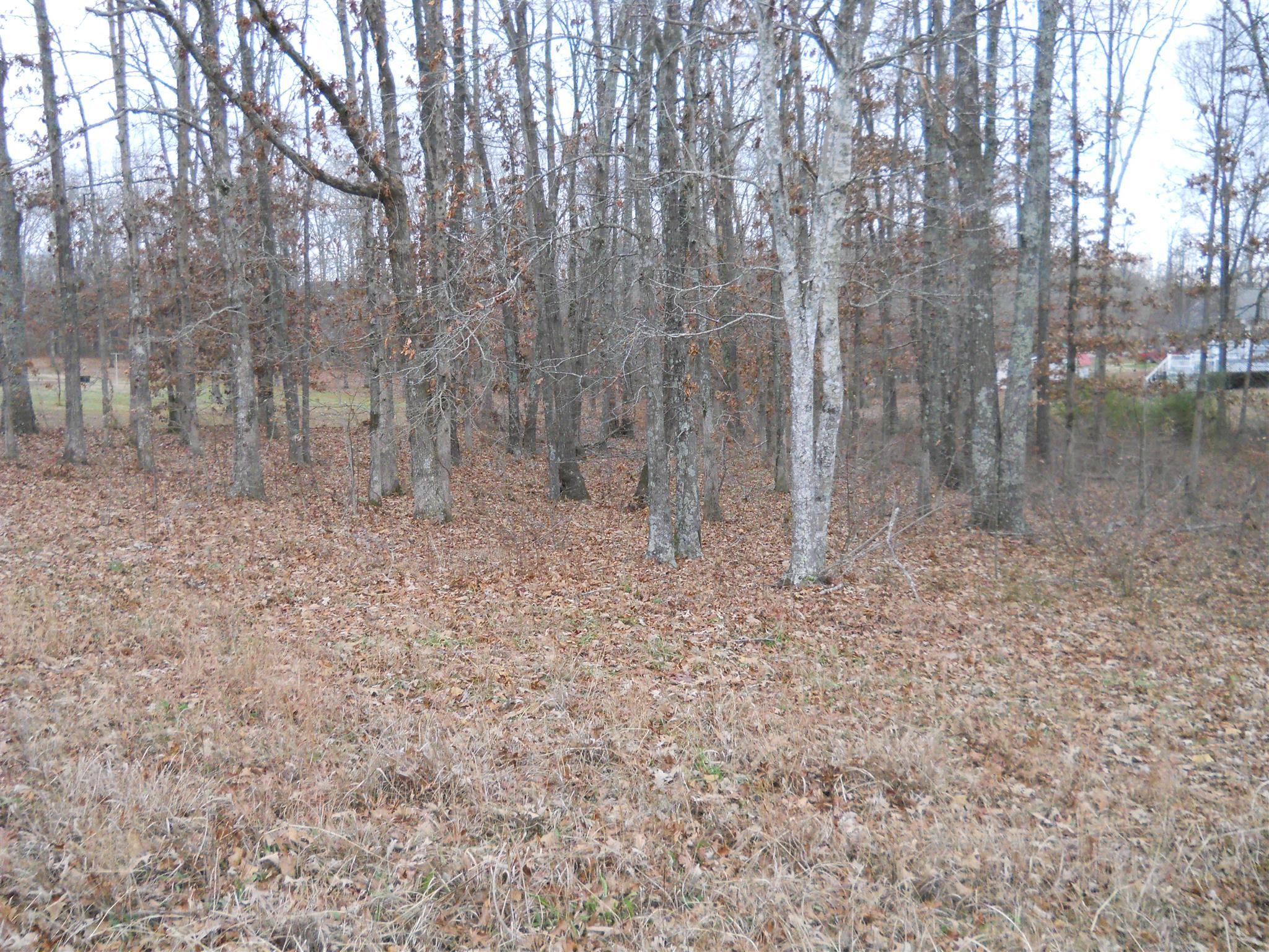 0 Pin Oaks Ln, Hohenwald, TN 38462 - Hohenwald, TN real estate listing