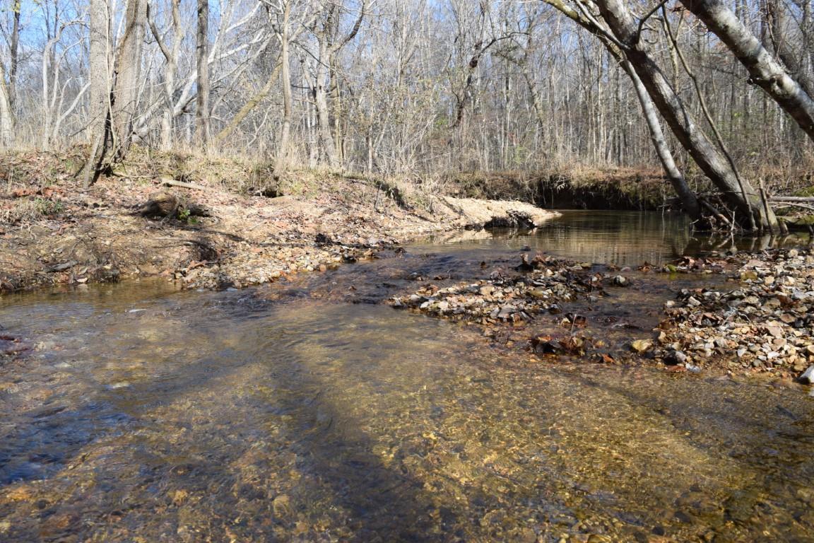 531 Baker Cemetery Ln, Sugar Tree, TN 38380 - Sugar Tree, TN real estate listing