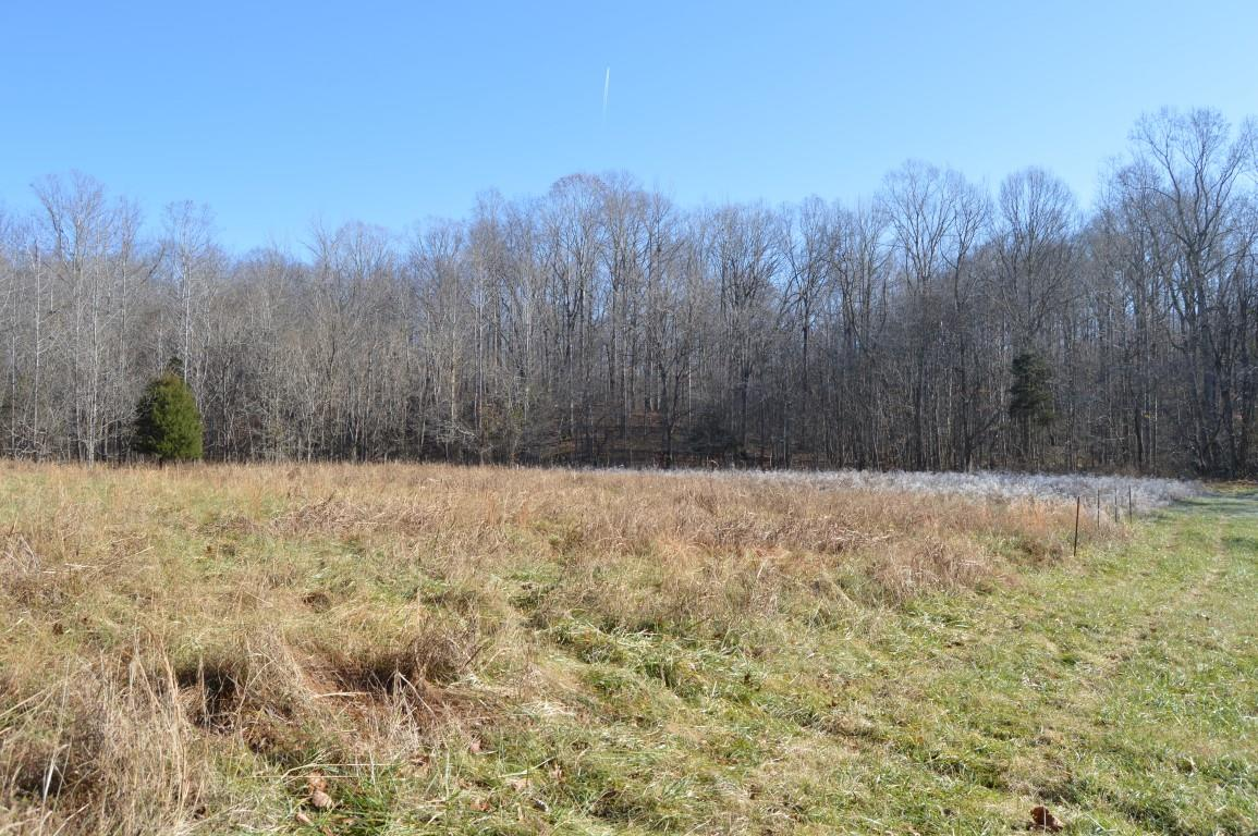 0 Hayes Ridge Rd, Indian Mound, TN 37079 - Indian Mound, TN real estate listing