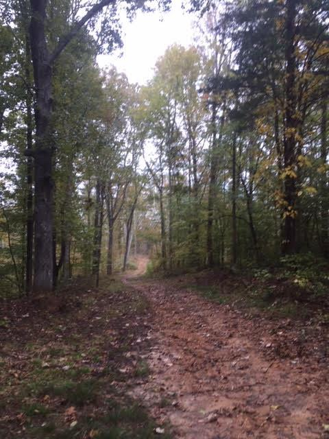 0 Bakerville Rd E Of, Waverly, TN 37185 - Waverly, TN real estate listing