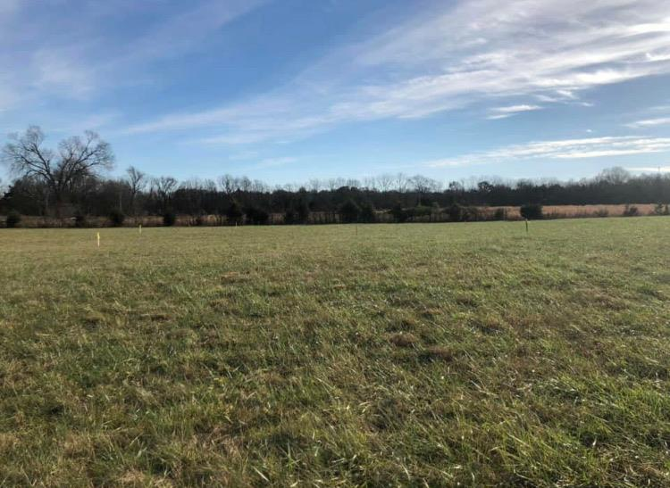 1 Rhonda Dr. lot 4, Christiana, TN 37037 - Christiana, TN real estate listing