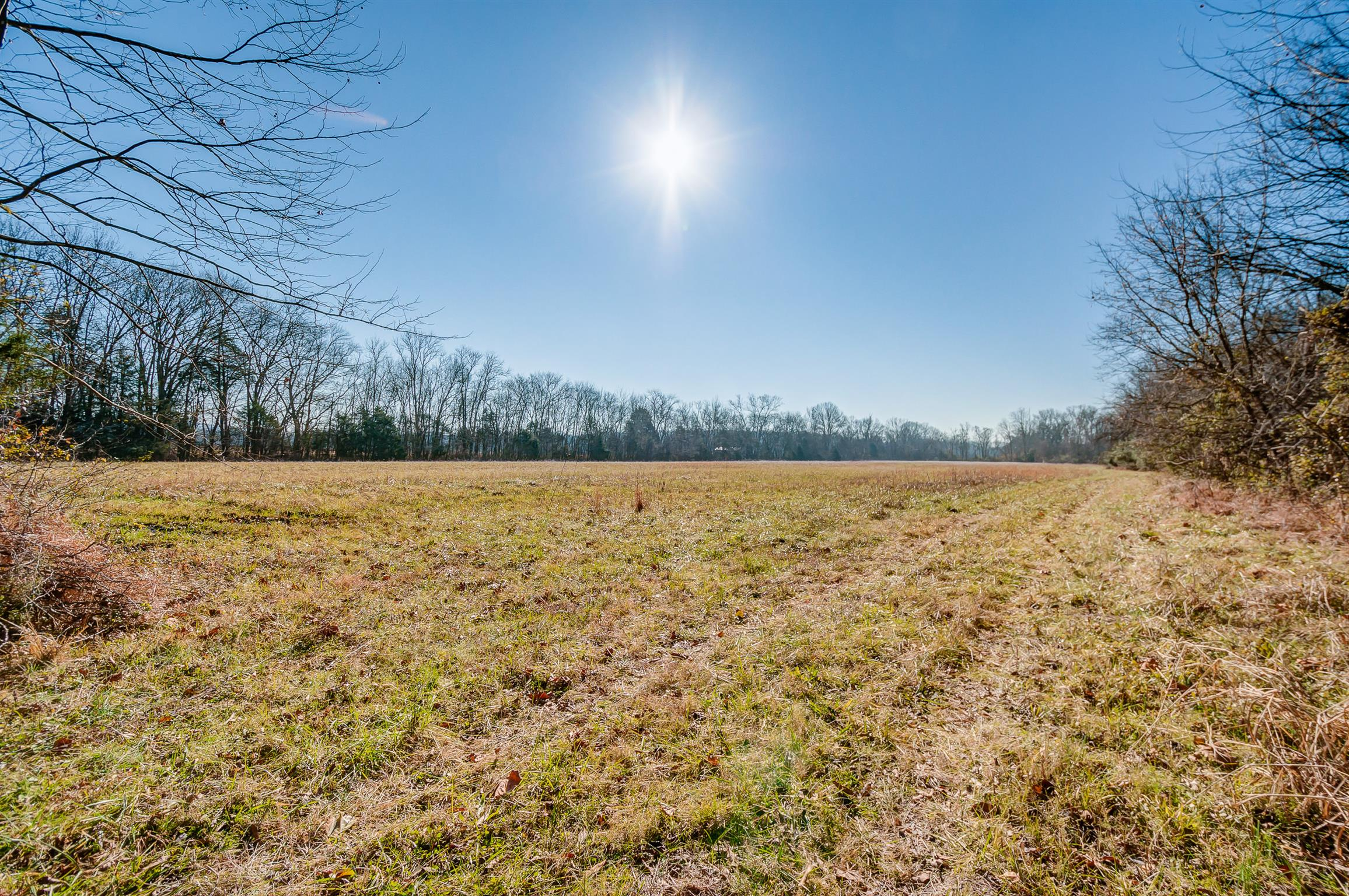 0 Wilson Park, Franklin, TN 37067 - Franklin, TN real estate listing