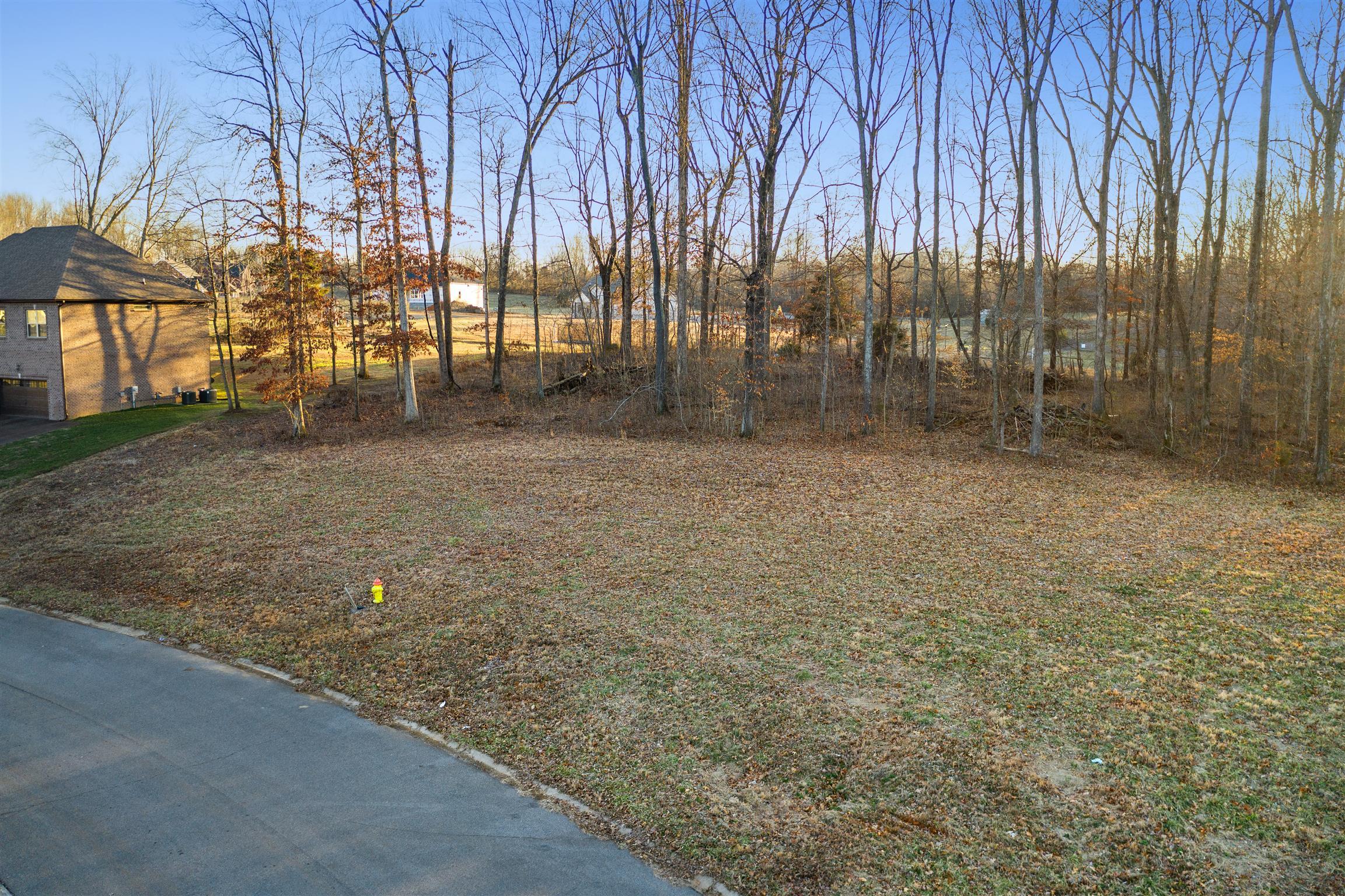 4407 Memory Ln, Adams, TN 37010 - Adams, TN real estate listing