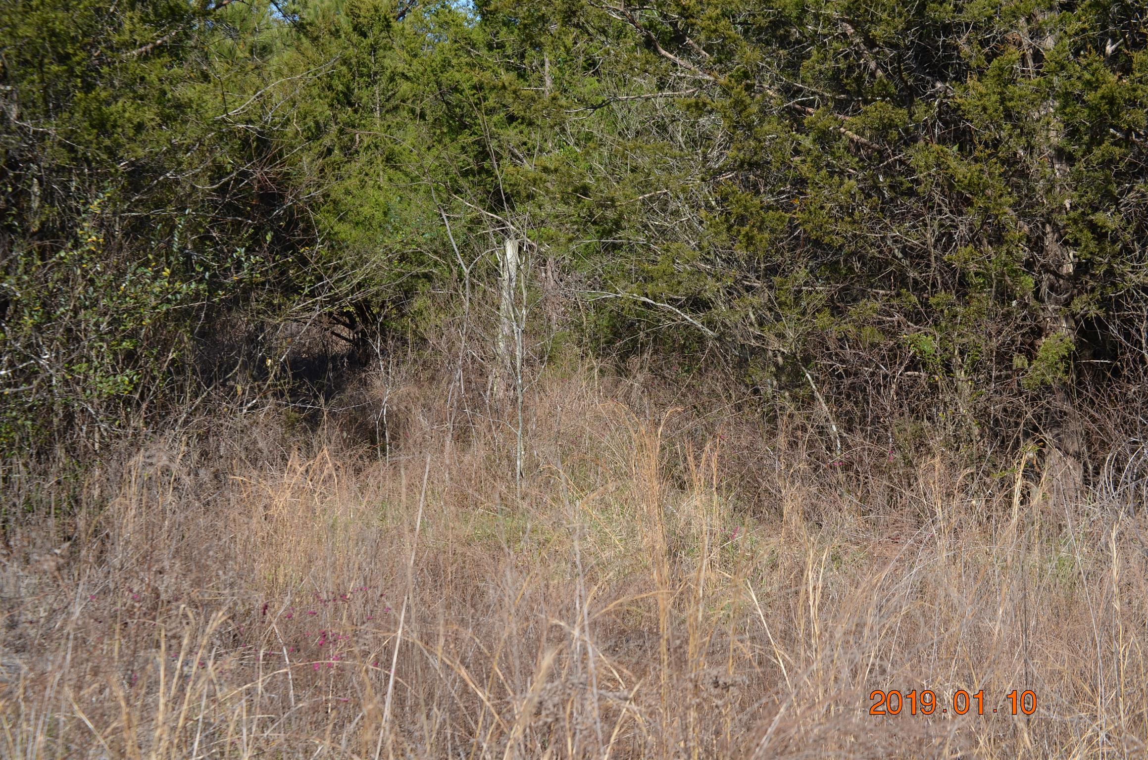 0 Mount Herman, Murfreesboro, TN 37127 - Murfreesboro, TN real estate listing