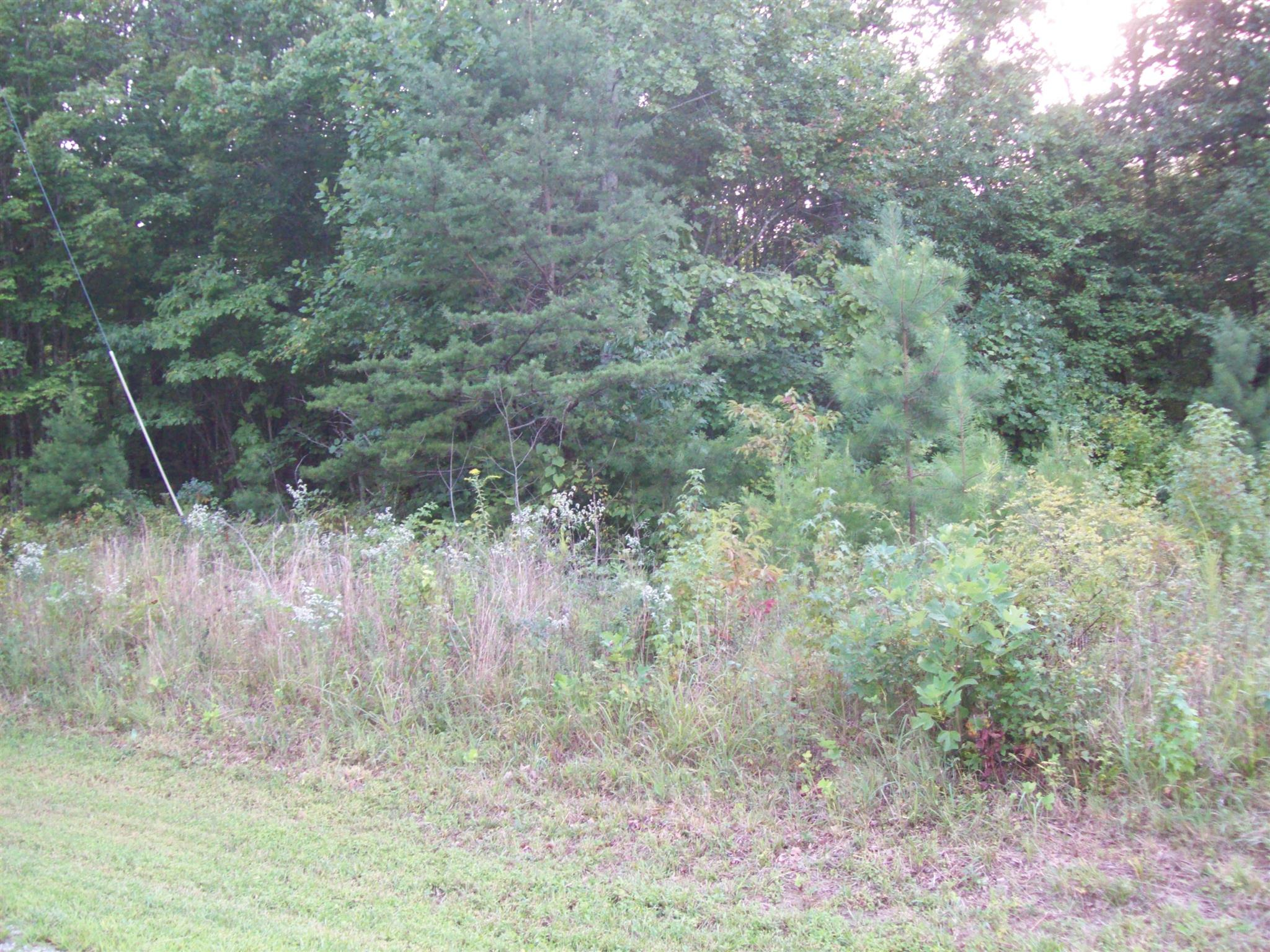0 Keith Springs Mtn Rd, Belvidere, TN 37306 - Belvidere, TN real estate listing