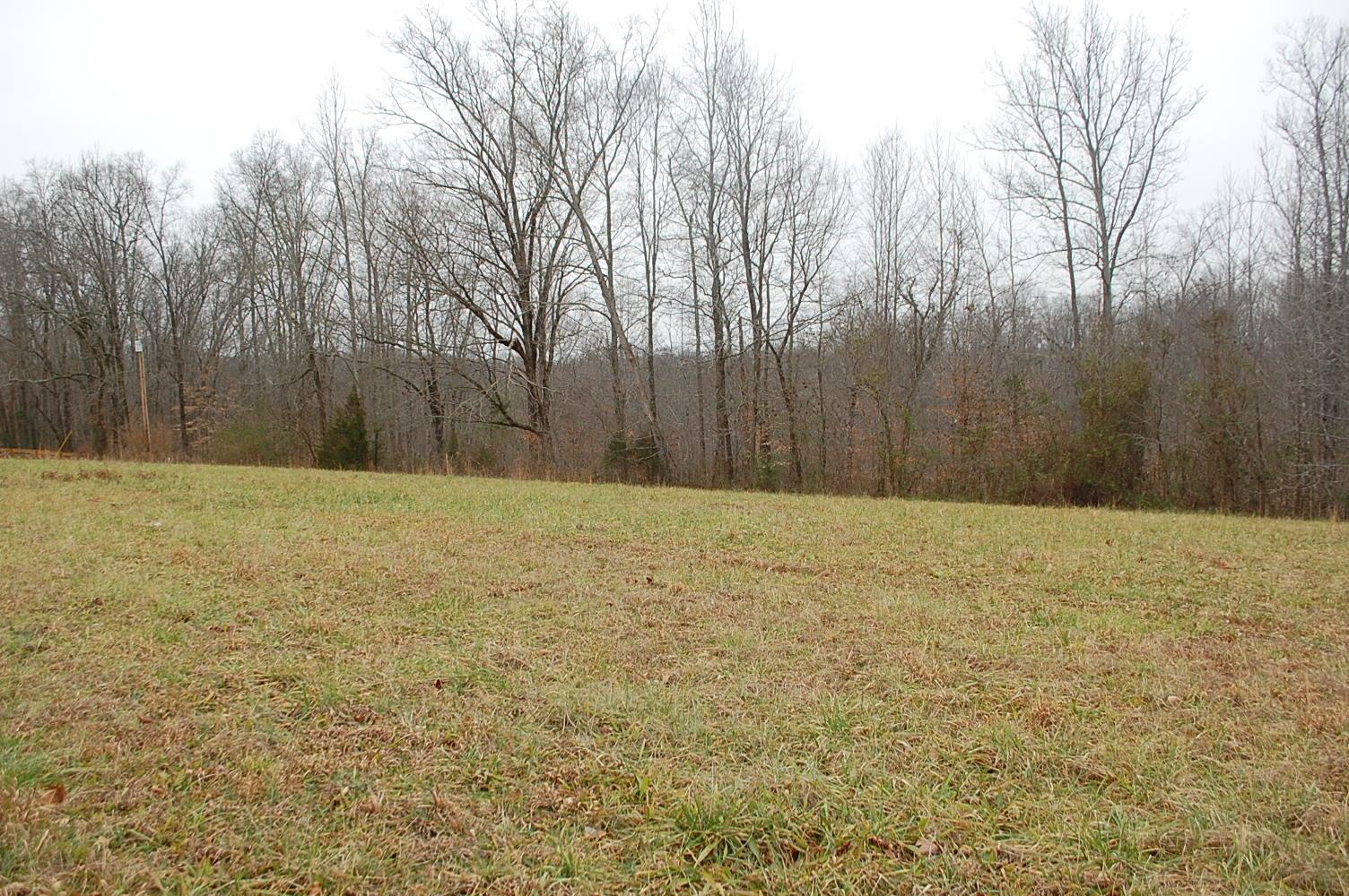 0 Turkey Creek Loop Rd, Tullahoma, TN 37388 - Tullahoma, TN real estate listing