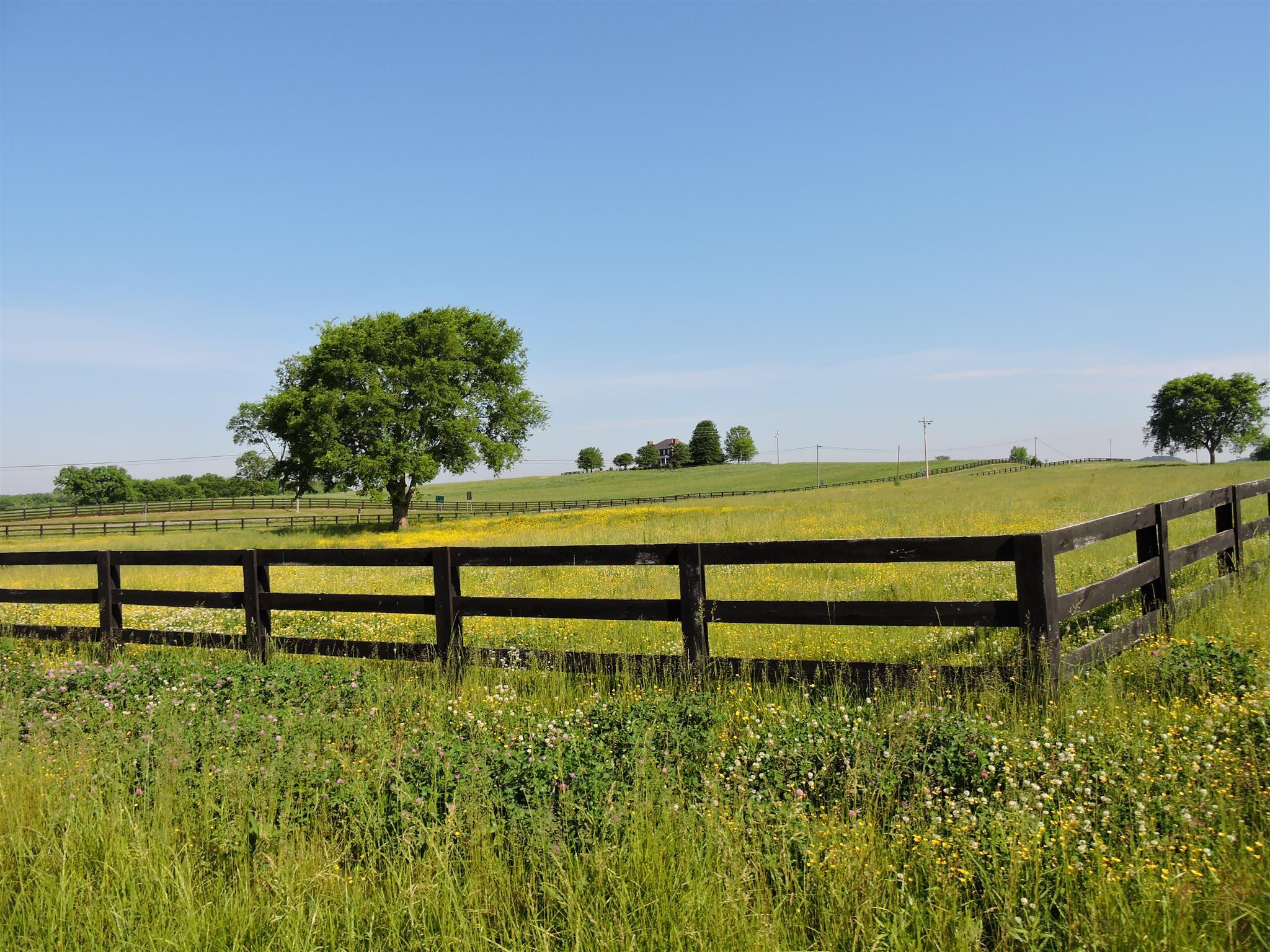1 Walker Rd, Beechgrove, TN 37018 - Beechgrove, TN real estate listing