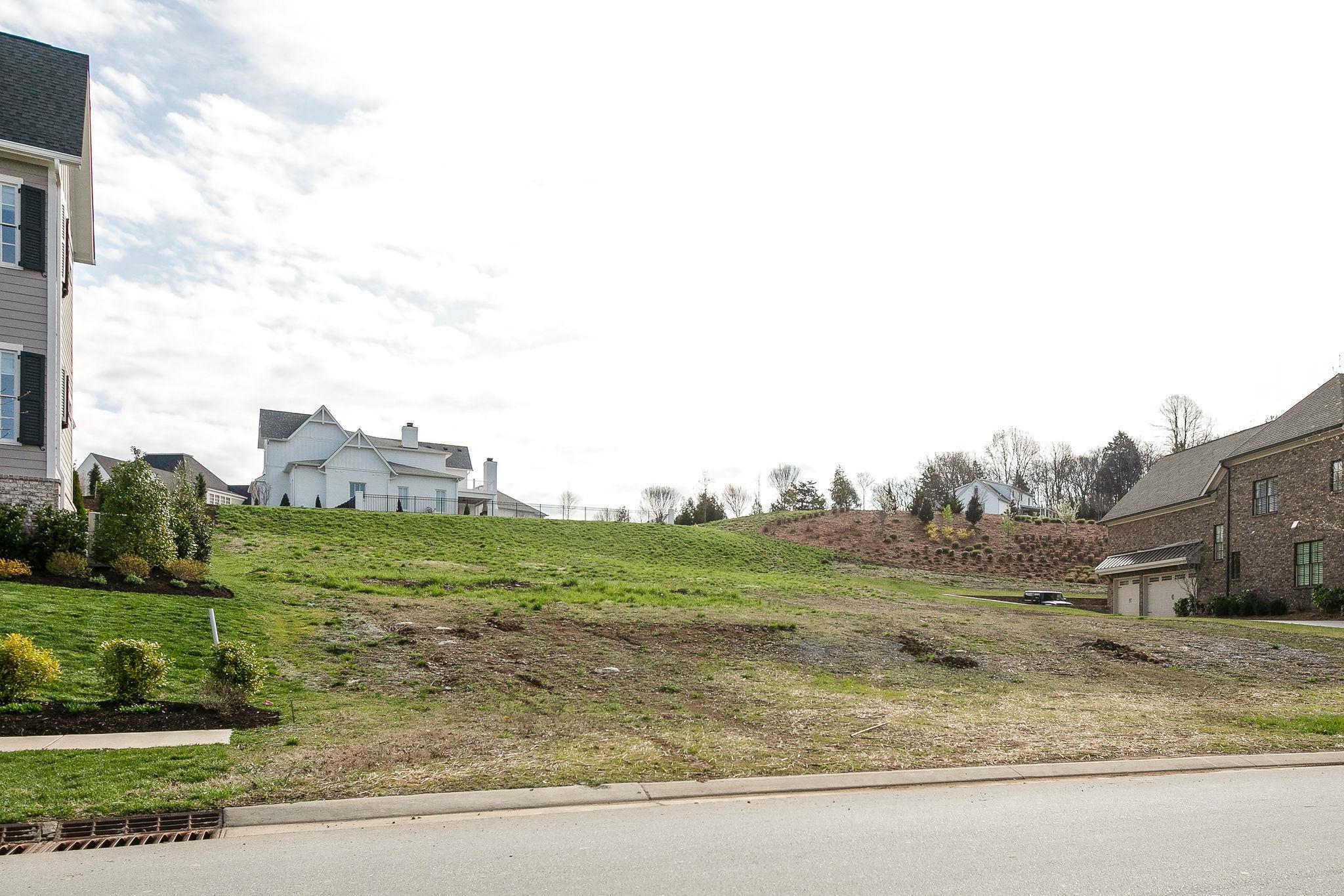 8424 Heirloom Blvd, College Grove, TN 37046 - College Grove, TN real estate listing