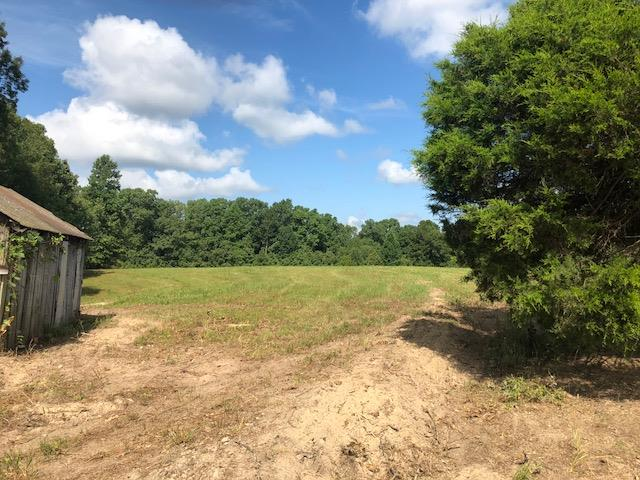 7950 Fisher Rd Lot #2, Primm Springs, TN 38476 - Primm Springs, TN real estate listing