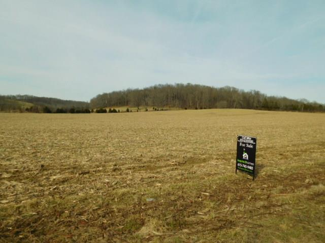 119 Awesome Avenue-Lot 6, Cottontown, TN 37048 - Cottontown, TN real estate listing