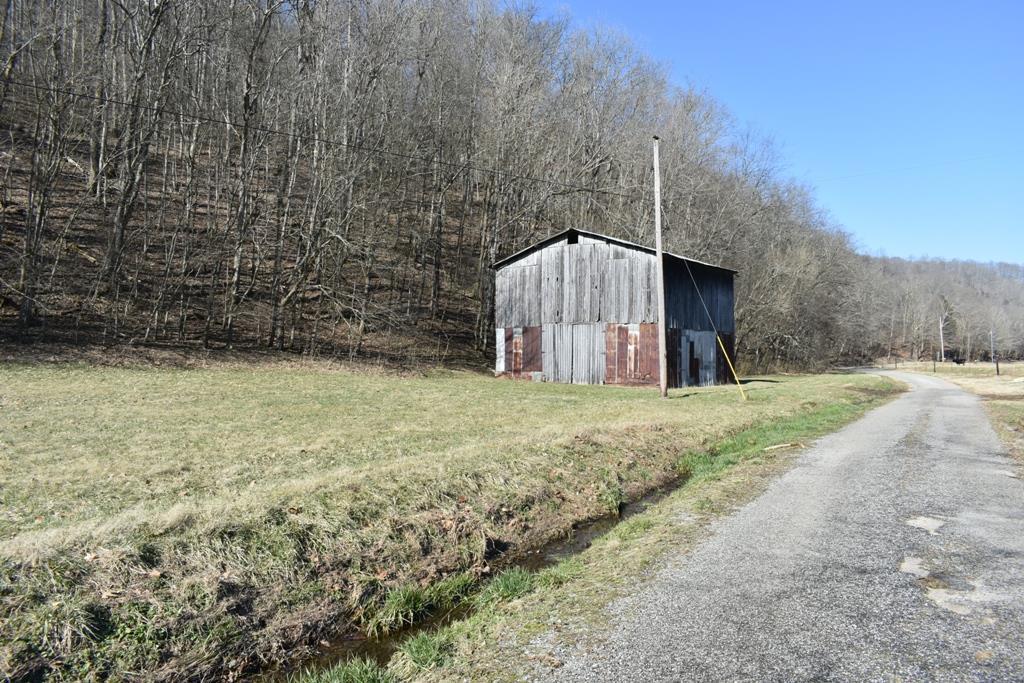0 Carver Hollow Ln, Pleasant Shade, TN 37145 - Pleasant Shade, TN real estate listing