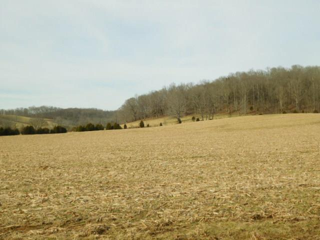 119 Awesome Avenue-Lot 5, Cottontown, TN 37048 - Cottontown, TN real estate listing