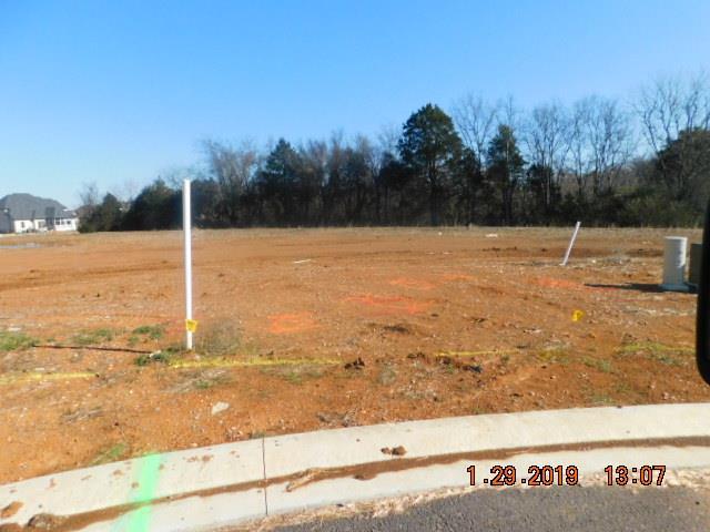 3102 Stephanie Ct, Murfreesboro, TN 37128 - Murfreesboro, TN real estate listing