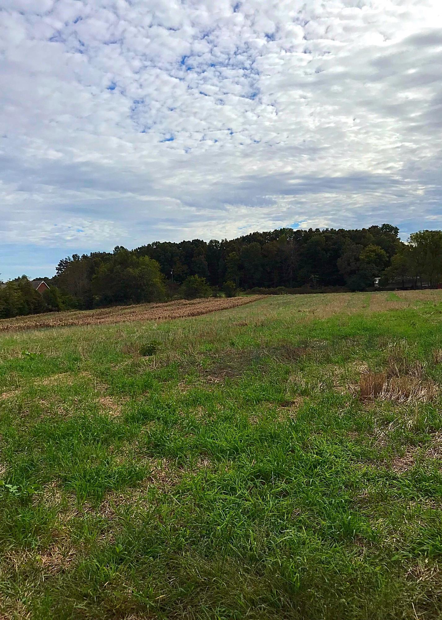 0 Wandaland Road, Cedar Hill, TN 37032 - Cedar Hill, TN real estate listing
