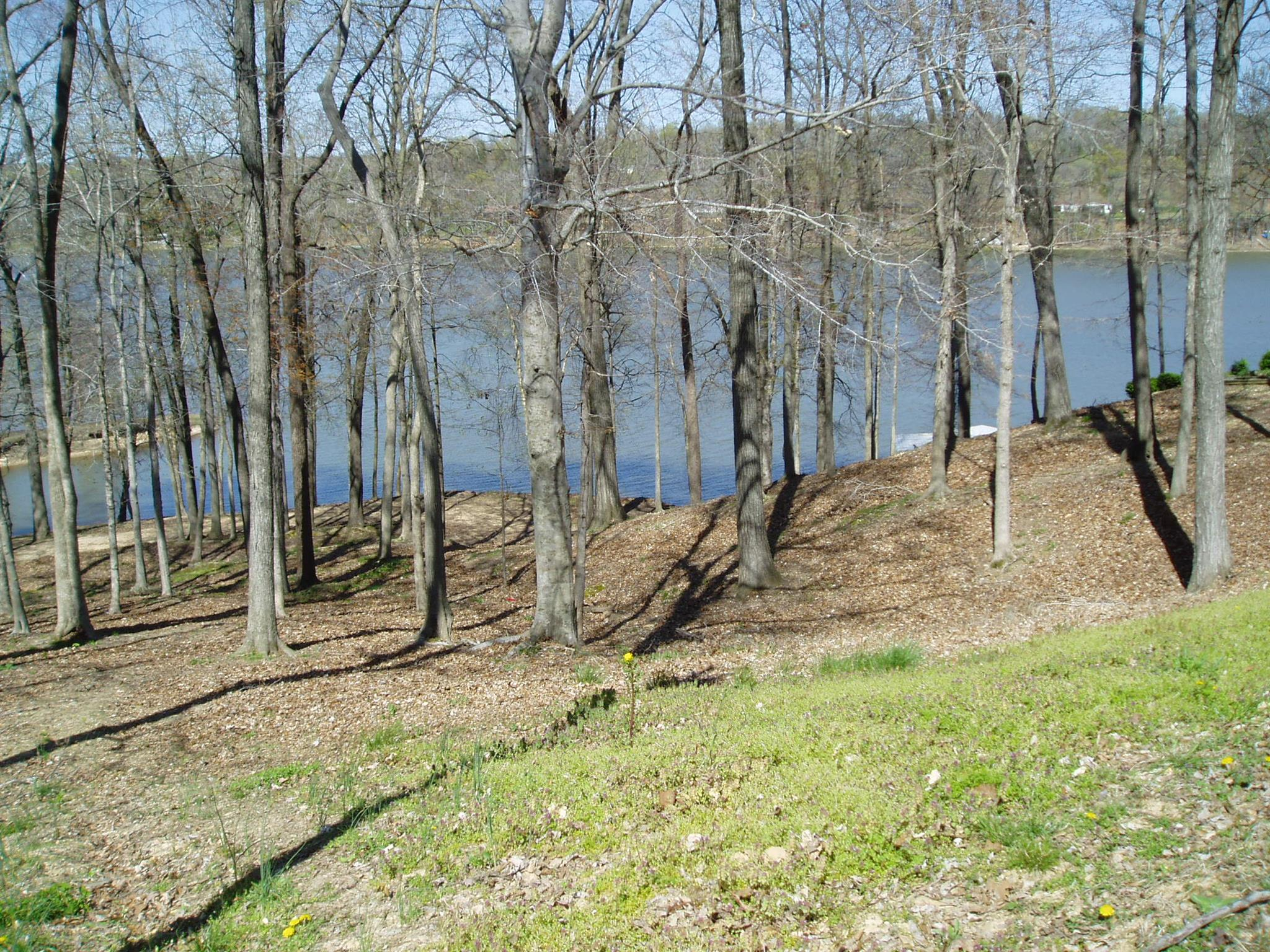 820 Stirling Rd, Camden, TN 38320 - Camden, TN real estate listing
