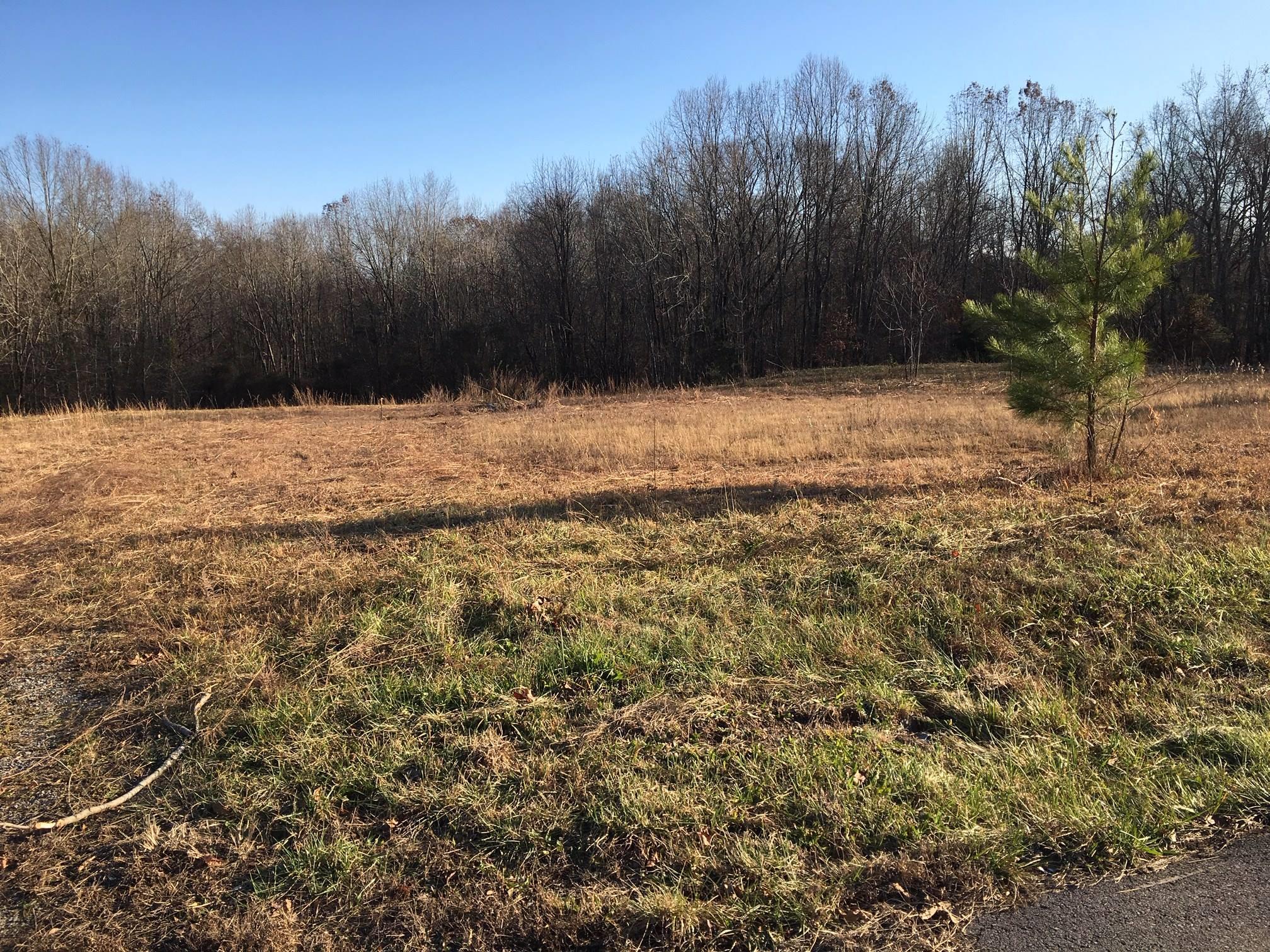 2 Lake Rd, Woodlawn, TN 37191 - Woodlawn, TN real estate listing