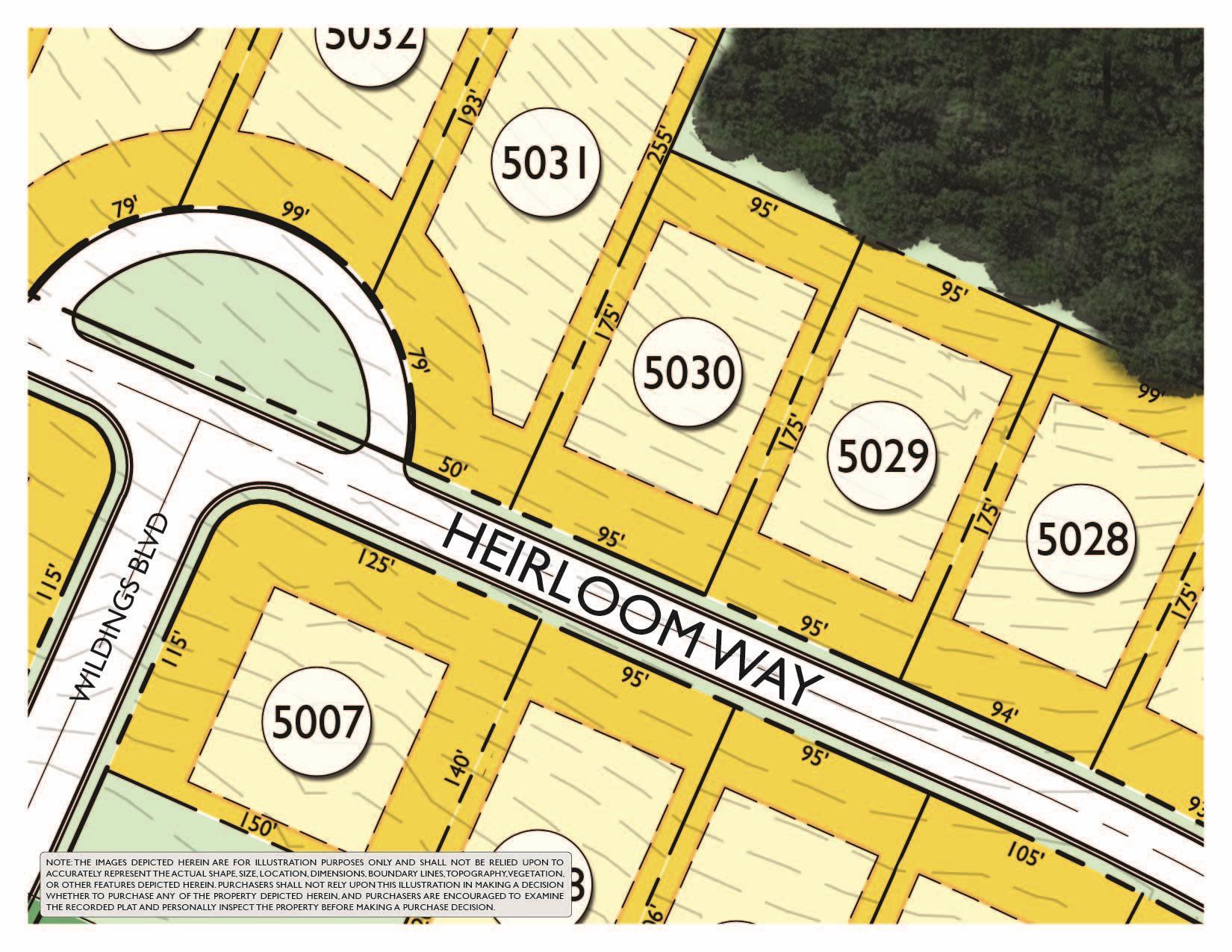 8227 Heirloom Blvd (Lot 5030), College Grove, TN 37046 - College Grove, TN real estate listing