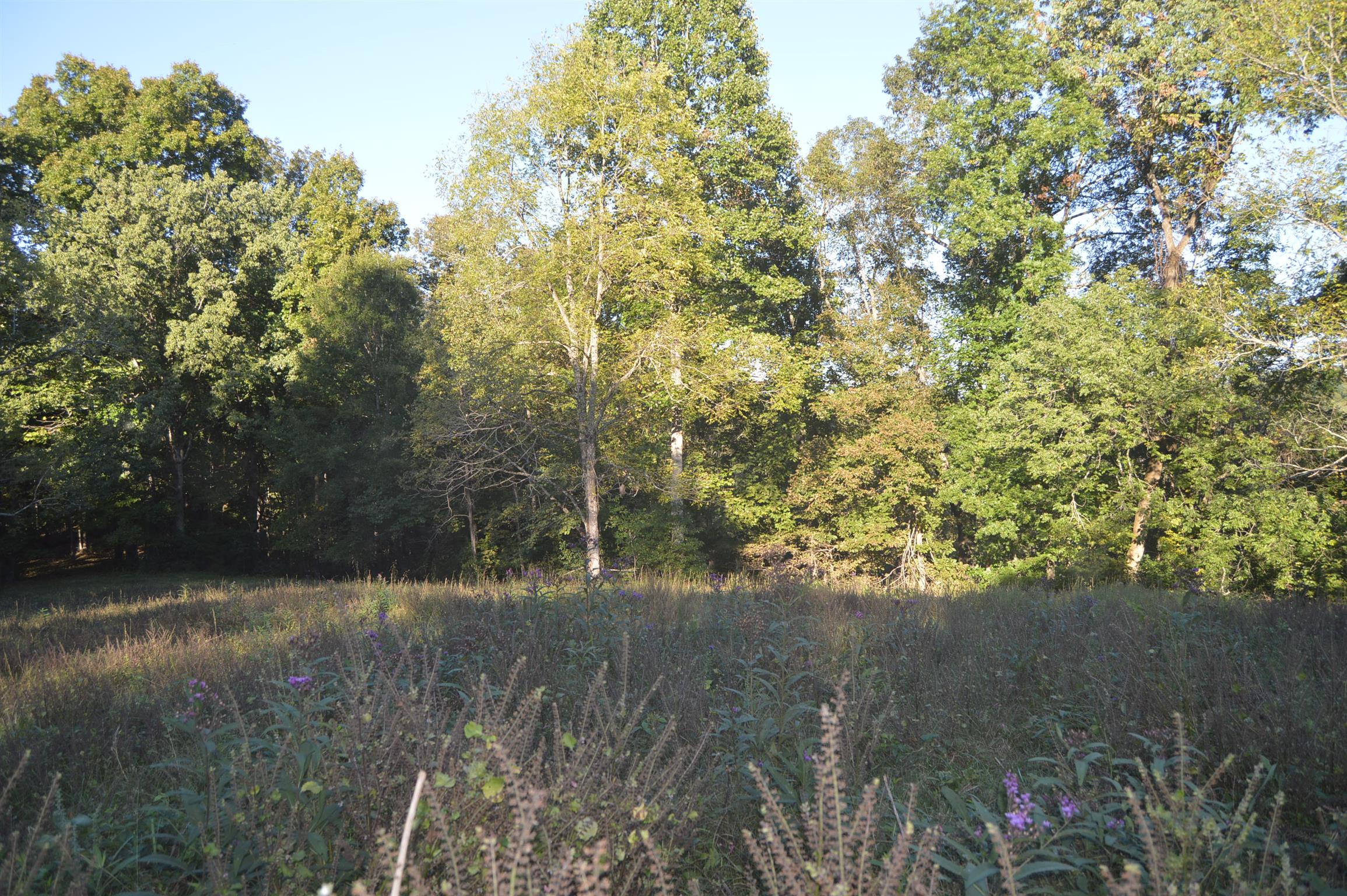 0 Highway 41, Manchester, TN 37355 - Manchester, TN real estate listing