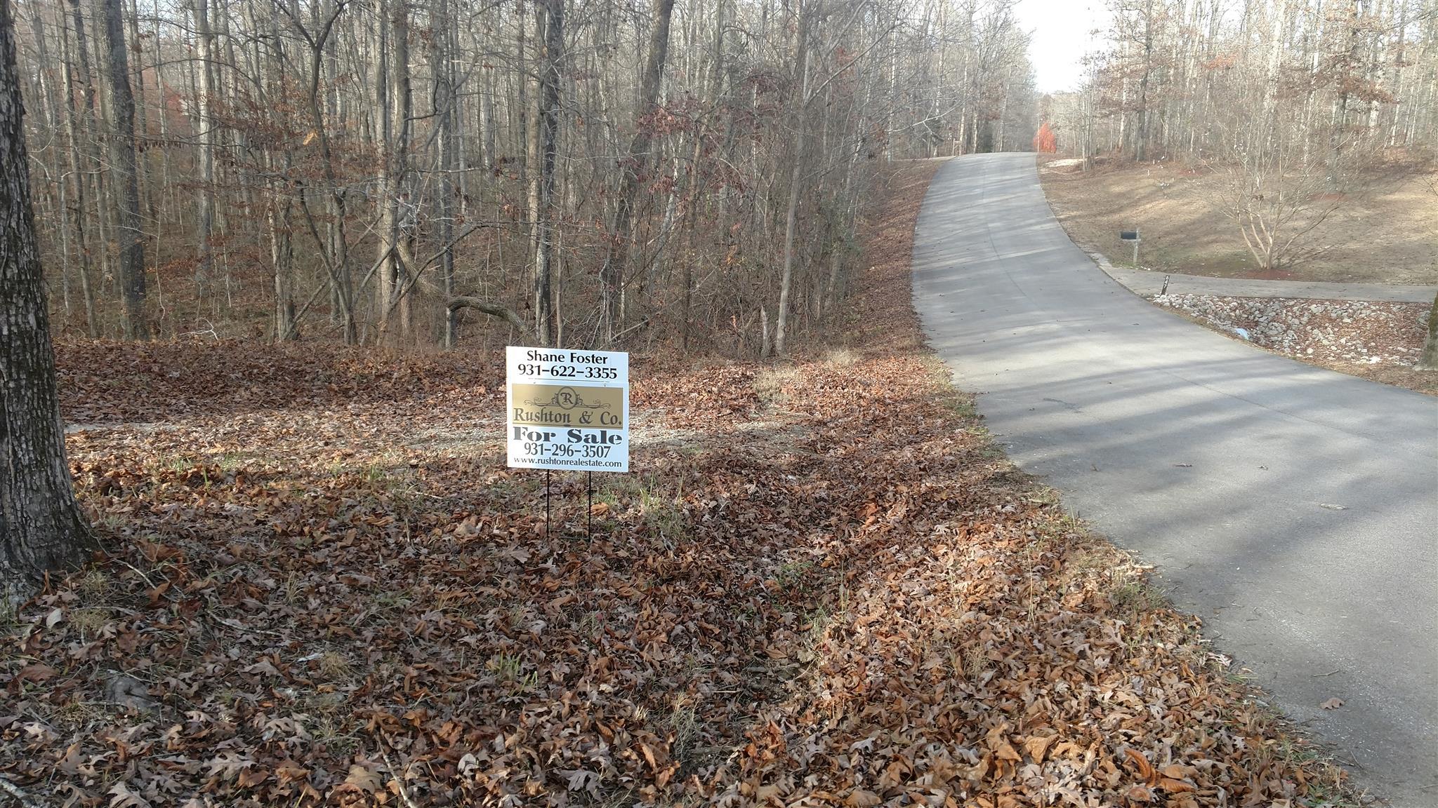 650 Oak Shadow Dr, New Johnsonville, TN 37134 - New Johnsonville, TN real estate listing
