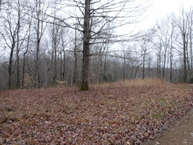 9 Backwoods Trails Lane, Celina, TN 38551 - Celina, TN real estate listing