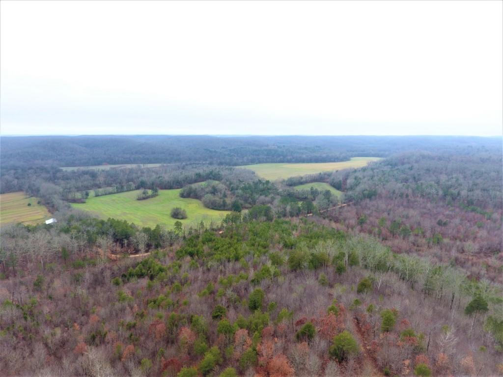 0 Tinin Rd, Clifton, TN 38425 - Clifton, TN real estate listing