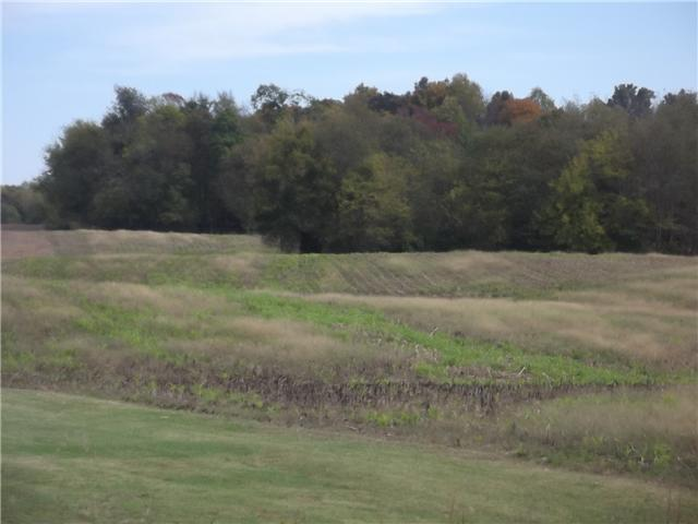 0 Highway 161, Springfield, TN 37172 - Springfield, TN real estate listing