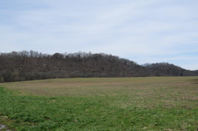0 Locke Rd, Lynnville, TN 38472 - Lynnville, TN real estate listing