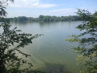0 Woods Lake Rd Lot 2, Decherd, TN 37324 - Decherd, TN real estate listing