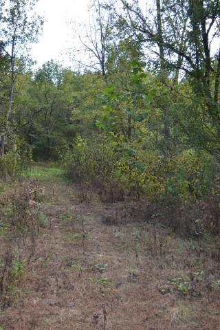 1259 Hurricane Creek, Woodbury, TN 37190 - Woodbury, TN real estate listing