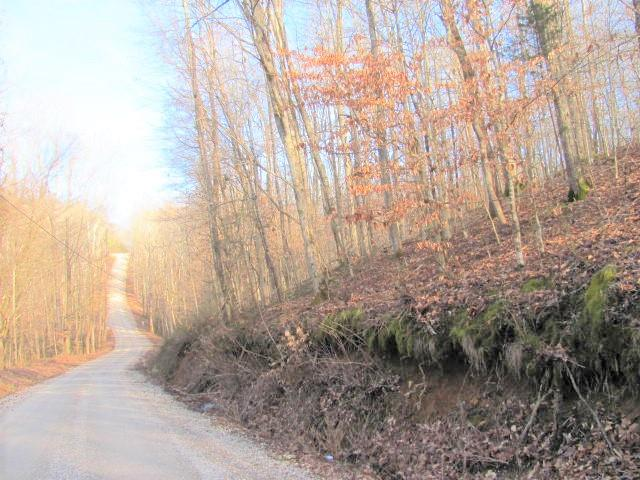 0 Holland Point Rd, Stewart, TN 37175 - Stewart, TN real estate listing