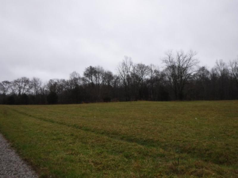 40 .47ac Arrowhead Road, Moss, TN 38575 - Moss, TN real estate listing