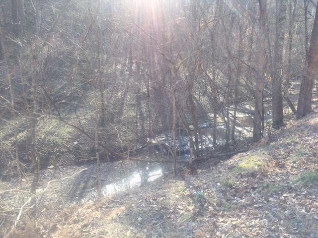 0 Garrison Branch Rd lot 9 Property Photo - Cottontown, TN real estate listing