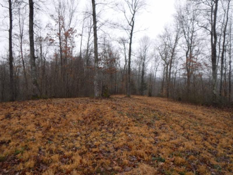 532 ac. Wet Mill Creek Rd, Celina, TN 38551 - Celina, TN real estate listing